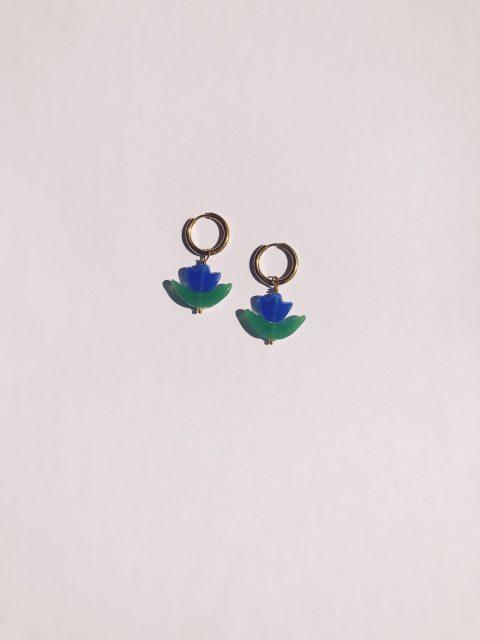 Tulipan azul